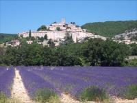 champ-de-lavandes-village-de-banon