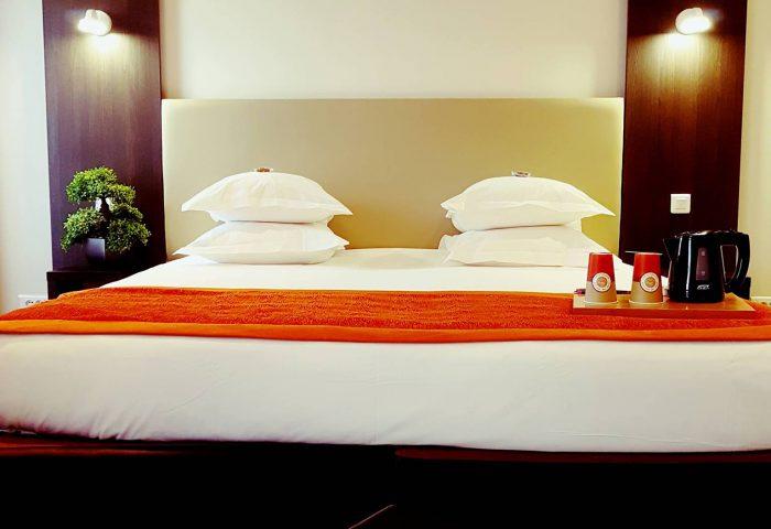 Hôtel Spa Les Alpes Gréoux Les Bains chambre supérieure