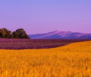 Montagne de Lure plateau d'Albion Ventoux